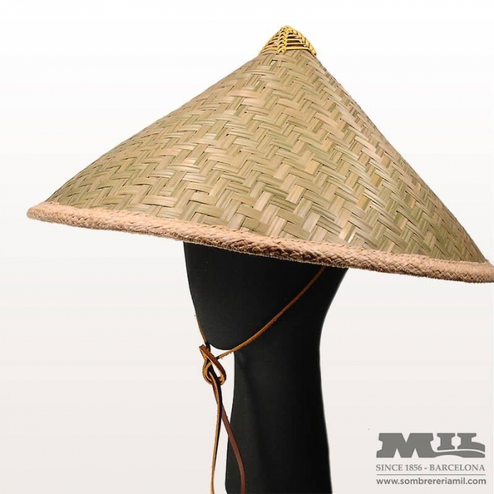 Brixton Meridian Hat