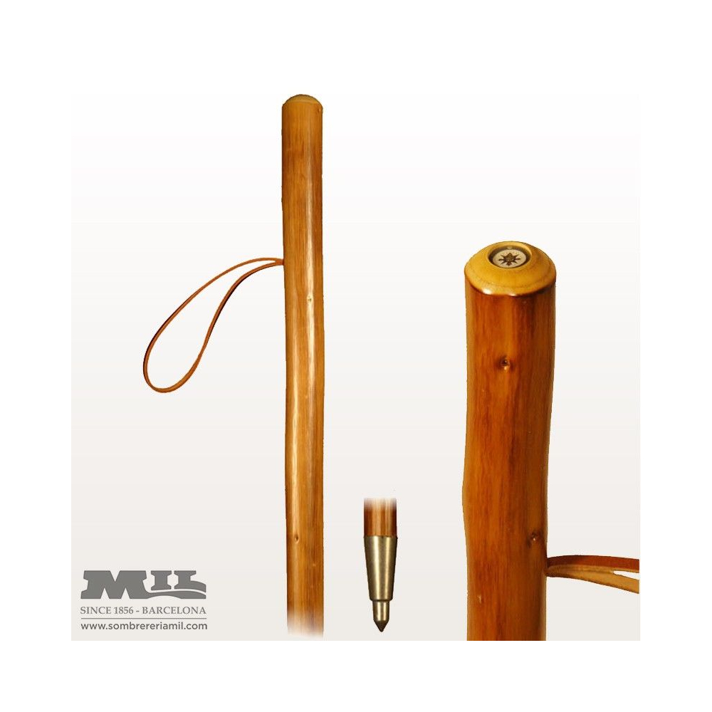 Field stick with compass