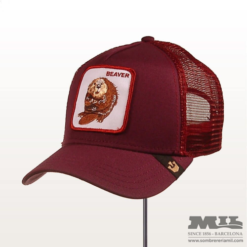 Gorra Goorin Two Beavers